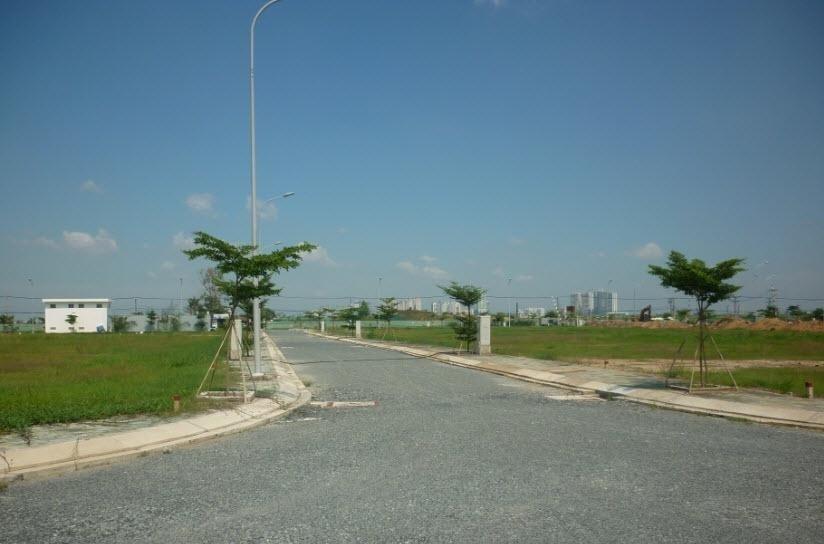 Đường nội khu và cây xanh ven đường đã hoàn thành,
