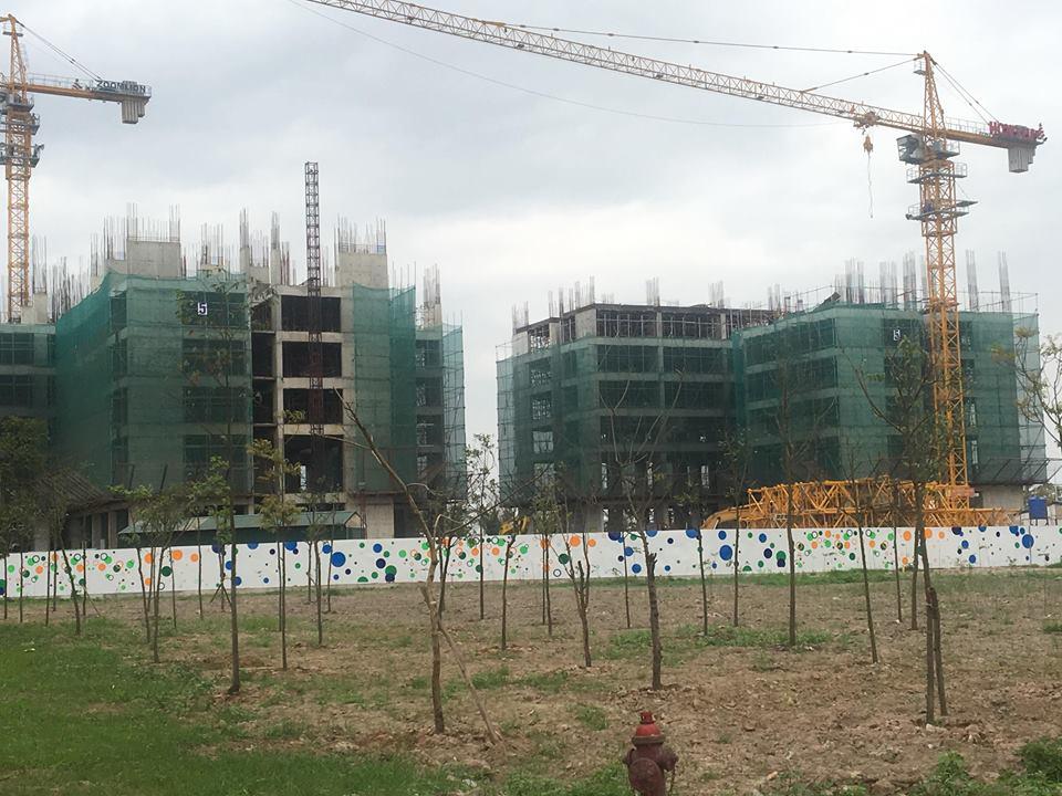 2 tòa CT11 và CT12 đang lên cột tầng 6