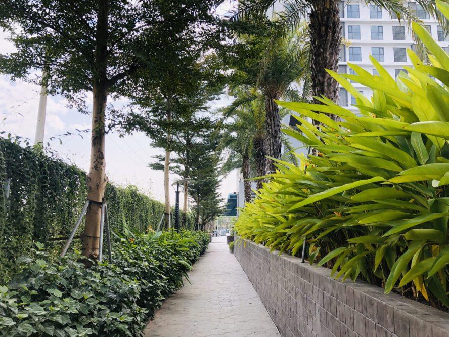Đường dạo bộ với 2 hàng cây xanh mát bao quanh 2 tòa Pearl 1 và Pearl 2