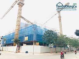 tiến độ xây dựng dlc complex